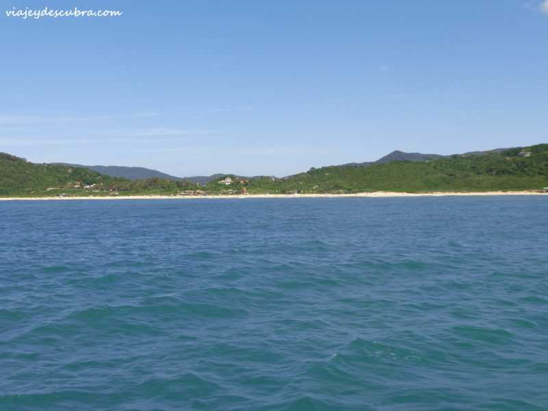 ilhadocampeche-campeche-floripa-florianopolis-brasil-mejoresplayas-mar-playas