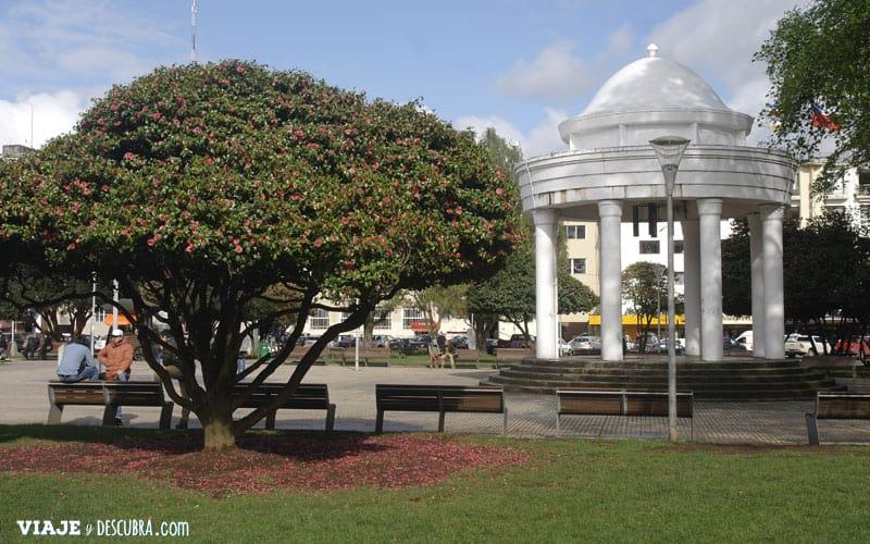 Chile, viajar en auto, Osorno, viajar en pareja, Cerro Tronador, Paso Internacional Cardenal Samore, plaza principal