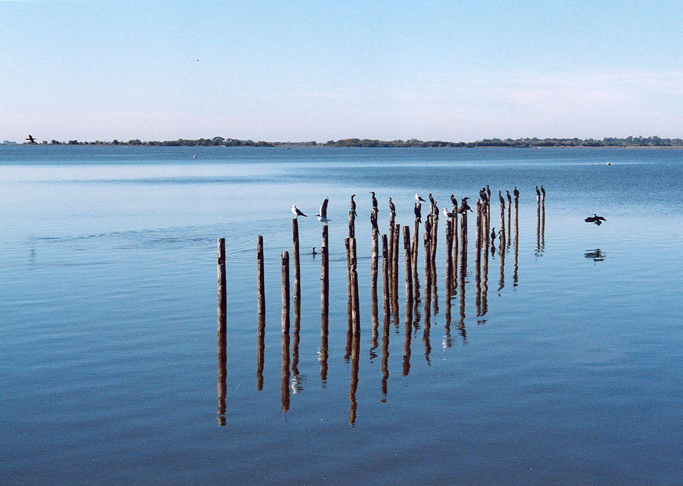 Laguna de Lobos, escapada Buenos Aires