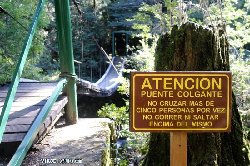 puerto blest, cascada de los cantaros, miradores, escalones, neuquen, bariloche, argentina, patagonia, senderos, trekking