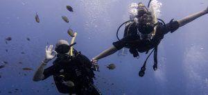 buceo,-open-water,-koh-tao,-pura-vida,-diving,-tailandia,-portada