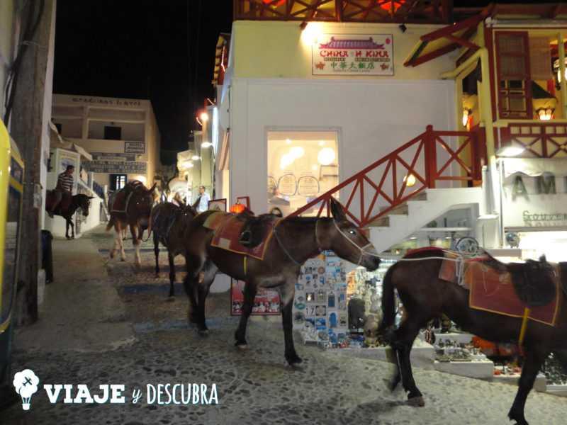 fira, thira, burros, santorini, oia, islas griegas, ferry, grecia