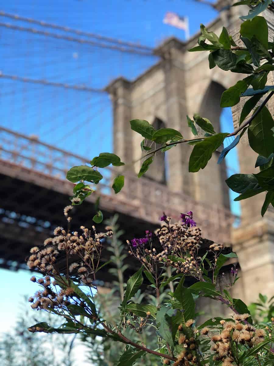 que-hacer-en-Nueva-York,-imperdibles,-estados-unidos,-new-york,-Puente-de-Brooklyn