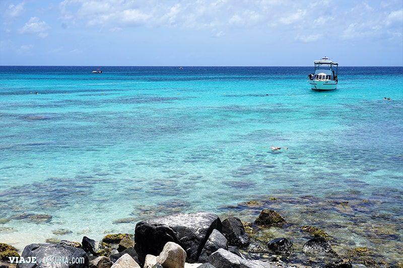 snorkel,-snorkeling,-aruba,-que-hacer-en-aruba,-boca-catalina