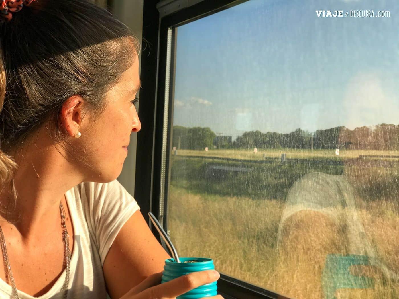 trenes-argentinos,-tren-larga-distancia-a-mar-del-plata,-ventanilla,-mates