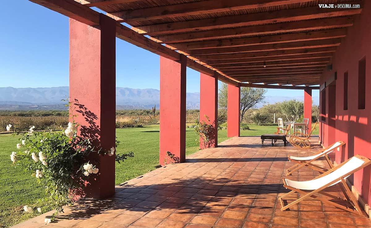 tres-dias-en-tucuman,-argentina,-norte,-noa,-viajeydescubra,-valles-calchaquies,-viñedo,-finca-albarossa