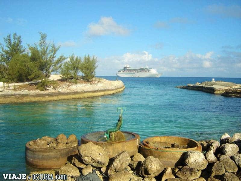 walt disney world, disney, vivir y trabajar en Disney, work and travel, USA, Estados Unidos, Crucero, Bahamas